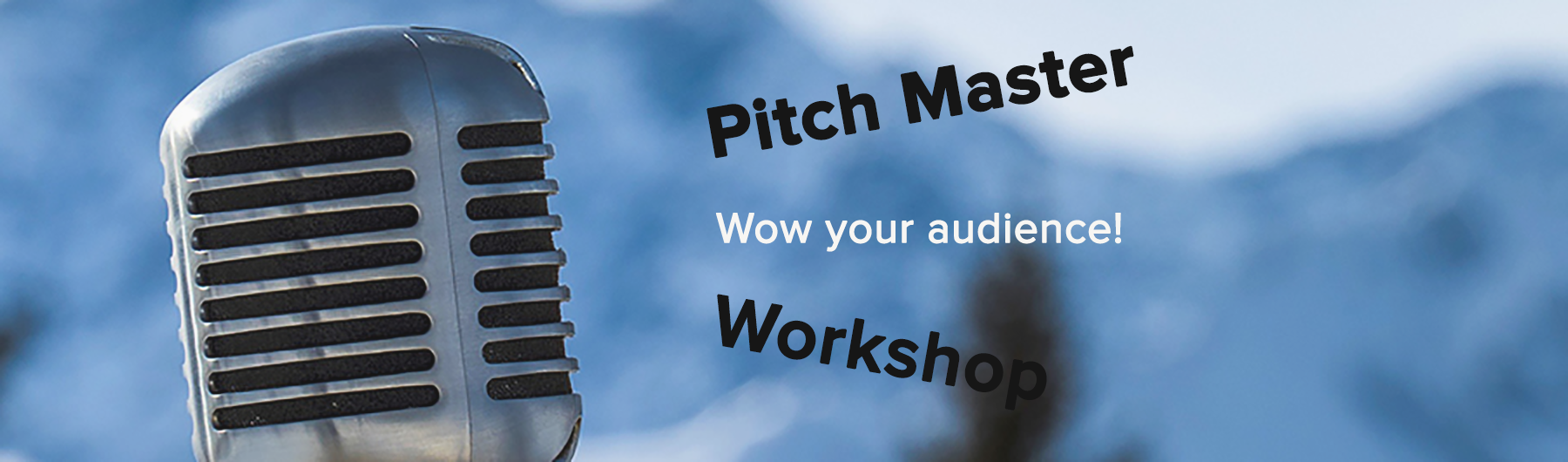 PitchMaster 2017