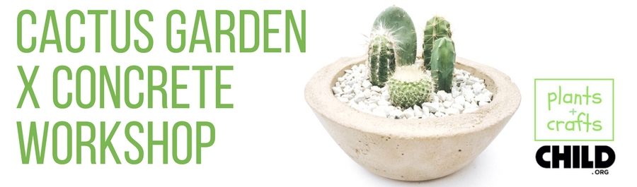 Cactus Garden x Concrete Workshop