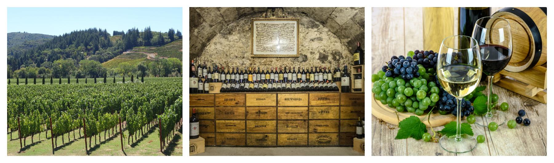 TCD Alumni Luxembourg - Winery Tour