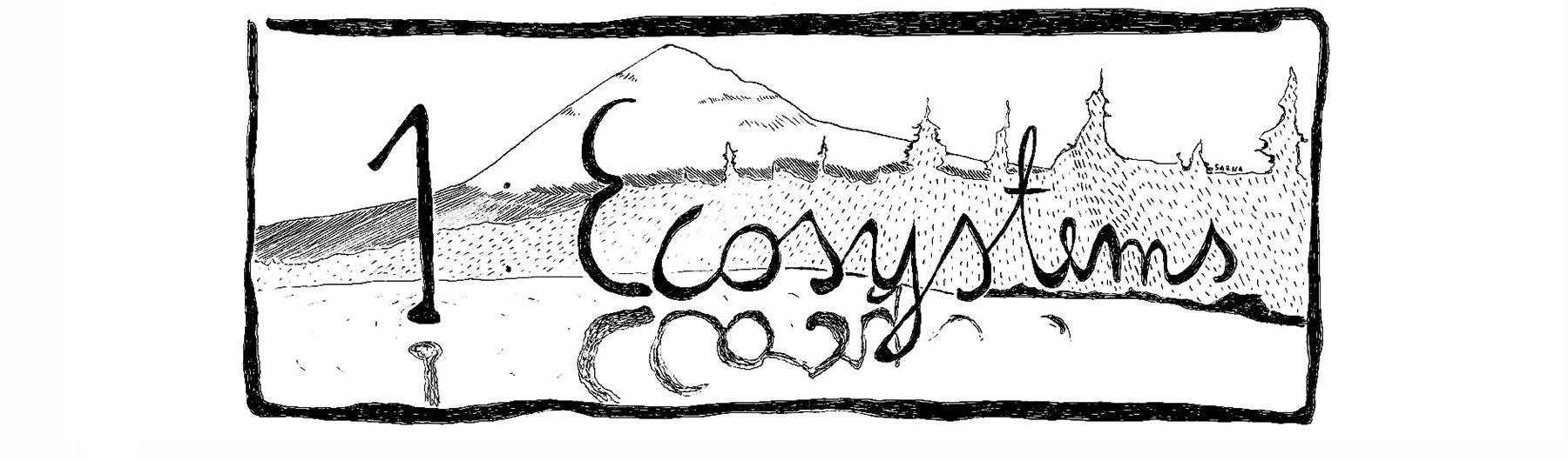 CodeBase Edinburgh Meetup 1: Ecosystems